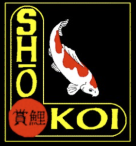 ShoKoi2016-06-29 at 5.17.42 PM